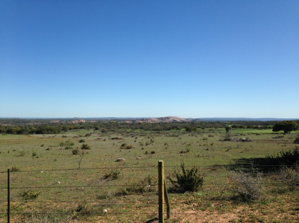 If you like, you can take an 8 mile segueway to Enchanted Rock. I'm told the road down to it is an insane downhill where you can reach upwards of 50mph, but the climb back out is agonizing. We skipped it this year. But here are a few pics of it.